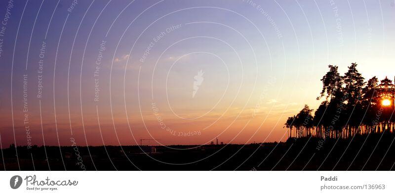 Abendrot Natur schön Himmel Baum Sonne blau rot Ferien & Urlaub & Reisen ruhig schwarz Wolken gelb Landschaft Beleuchtung orange groß