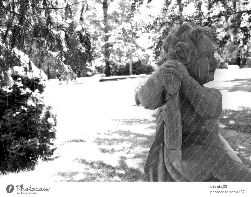 Park Rammenau Schwarzweißfoto Außenaufnahme Detailaufnahme Menschenleer Tag Kontrast Sonnenlicht Gegenlicht Zentralperspektive Profil Wegsehen androgyn Junge 1