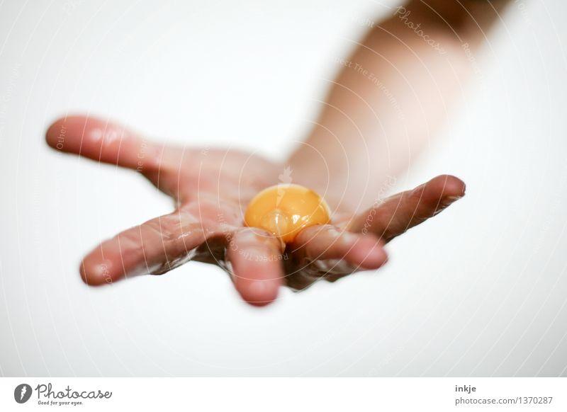 Man nehme ein Ei Lebensmittel Eigelb roh Ernährung Zutaten Lifestyle Erwachsene Hand Finger festhalten Ekel orange Glätte zeigen Farbfoto Innenaufnahme