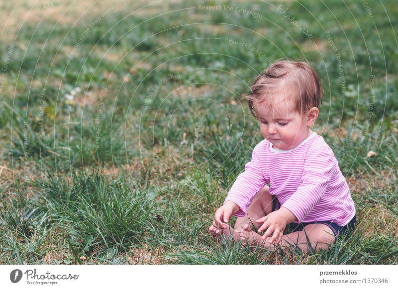 Mensch Kind schön Freude Mädchen Leben Gras Spielen Glück klein Garten Lifestyle Park Kindheit sitzen Baby