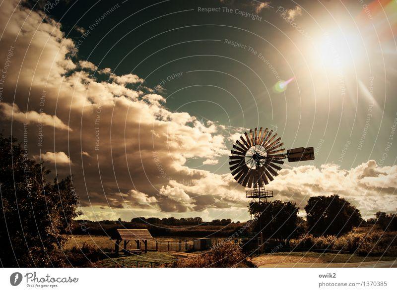 Windkraftanlage Himmel Natur alt Sonne Baum Landschaft Wolken Umwelt Gras Metall Horizont glänzend Wetter leuchten Sträucher Technik & Technologie