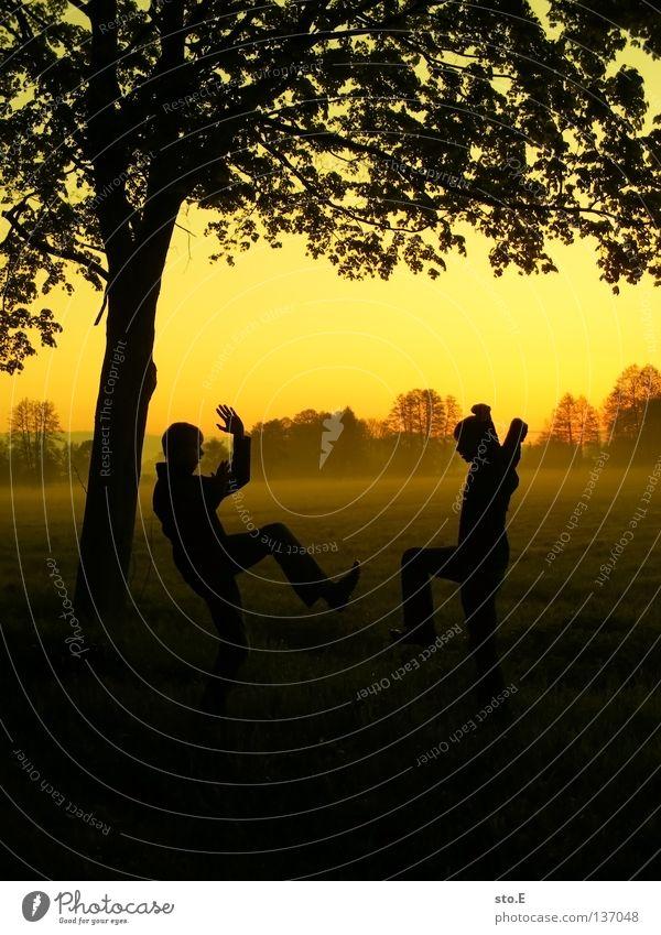 early morning | frühsport Mensch Mann Natur Jugendliche Himmel Baum Sonne ruhig Blatt schwarz Wolken gelb Ferne Farbe Lampe Wiese