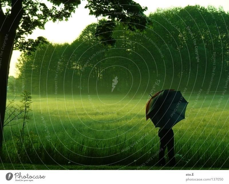 early morning | umbrella pt.3 Kerl Mann maskulin Stimmung Körperhaltung Lampe Wiese Feld Ferne Sonnenaufgang Morgen Baum Baumkrone Blatt Horizont Silhouette