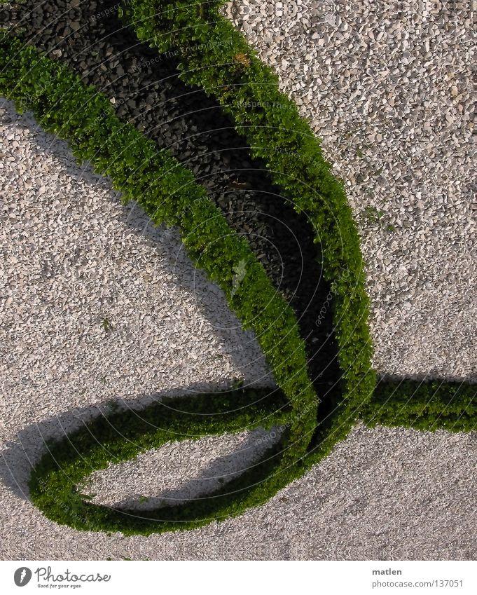 Grenzschwung grün weiß grau Garten Kies Barock Schlossgarten