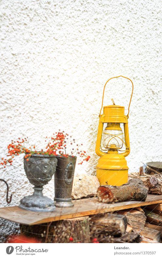 Gartendekoration Laterne Mauer Wand Dekoration & Verzierung gelb Design Idee einzigartig Inspiration ruhig Vogelbeeren Farbfoto Gedeckte Farben mehrfarbig