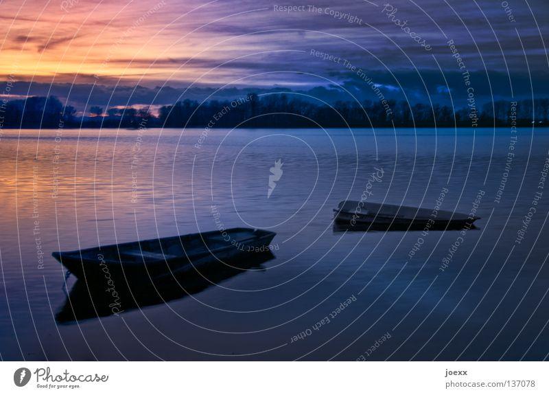 Untergang Abenddämmerung abgelegen Angeln Baggersee Baum beschaulich Wasserfahrzeug Einsamkeit Erholung dunkel Fischerboot ruhig Horizont Denken Ruderboot