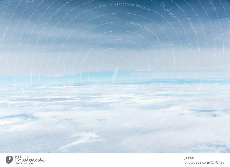 Drunter und drüber Umwelt Himmel nur Himmel Wolken Schönes Wetter fliegen frei hell hoch schön blau grau weiß ruhig Hoffnung Idylle Religion & Glaube Wolkenfeld