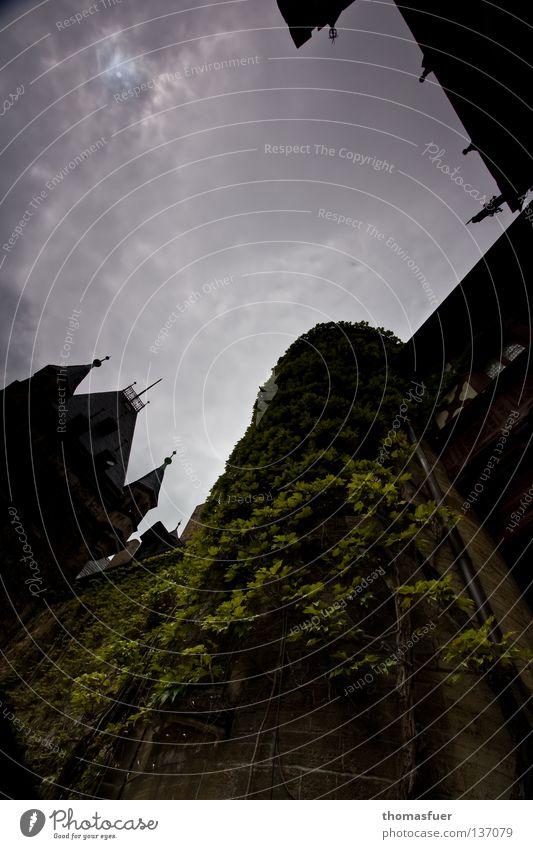 Rapunzel Himmel Wolken Elektrizität gefährlich Turm gruselig Burg oder Schloss historisch Märchen Fantasygeschichte Vampir Efeu Mittelalter Spuk Dracula