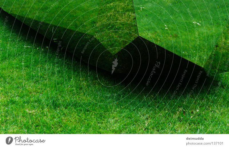 Wiese Natur schön Blume grün Sommer schwarz dunkel Ecke Spiegel Spitze Surrealismus eckig