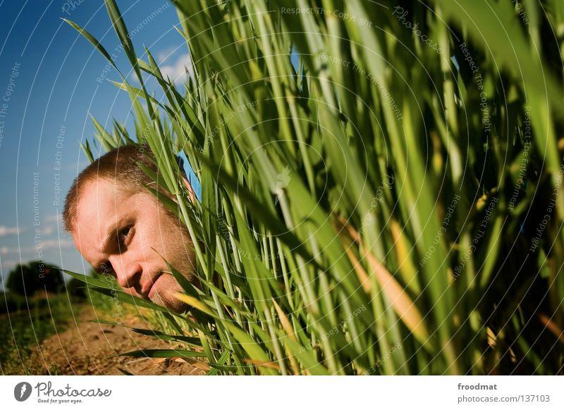 feldbauer Mann Hand Himmel blau Freude Wolken Wiese Kopf Feld warten lustig Suche entdecken Bart Landwirtschaft