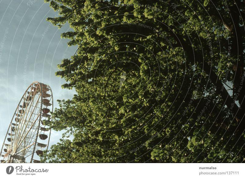 Spass gegen Natur Jahrmarkt Riesenrad Krach Losbude unerträglich Gitter Freude zerstören unnatürlich Alkoholisiert schwindelig drehen Baum Frühling Havelland