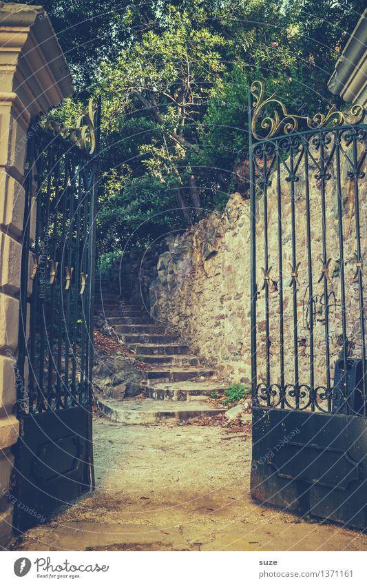 Verlockung Natur Ferien & Urlaub & Reisen alt Sommer Wärme Garten außergewöhnlich Park Treppe Dekoration & Verzierung offen Beginn Europa einzigartig Kultur