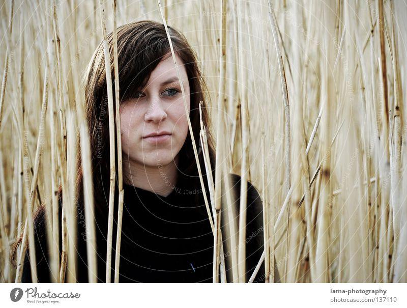 Zufriedenheit Frau Jugendliche schön Einsamkeit feminin Gefühle Gras Wege & Pfade Küste grau Traurigkeit See Erde Denken träumen