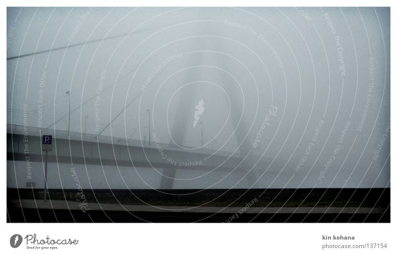 unendlichkeit Köln Severinsbrücke Straßennamenschild parken Säule Nebel dunkel grau schlechtes Wetter Asphalt nass feucht Wolken Grenze beseitigen Brücke Herbst