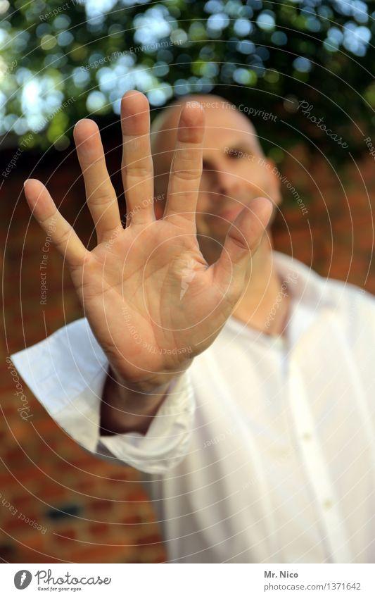 5 bier Lifestyle maskulin Mann Erwachsene Hand Finger 1 Mensch Umwelt Pflanze Mauer Wand Hemd Glatze berühren außergewöhnlich weiß achtsam Paparazzo stoppen