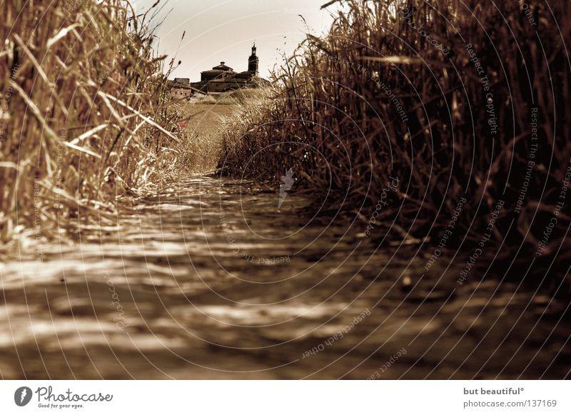 spain° wandern Froschperspektive Fußweg Spanien Sommer Physik Torres del rio Jakobsweg Camino de Santiago Wärme Filter