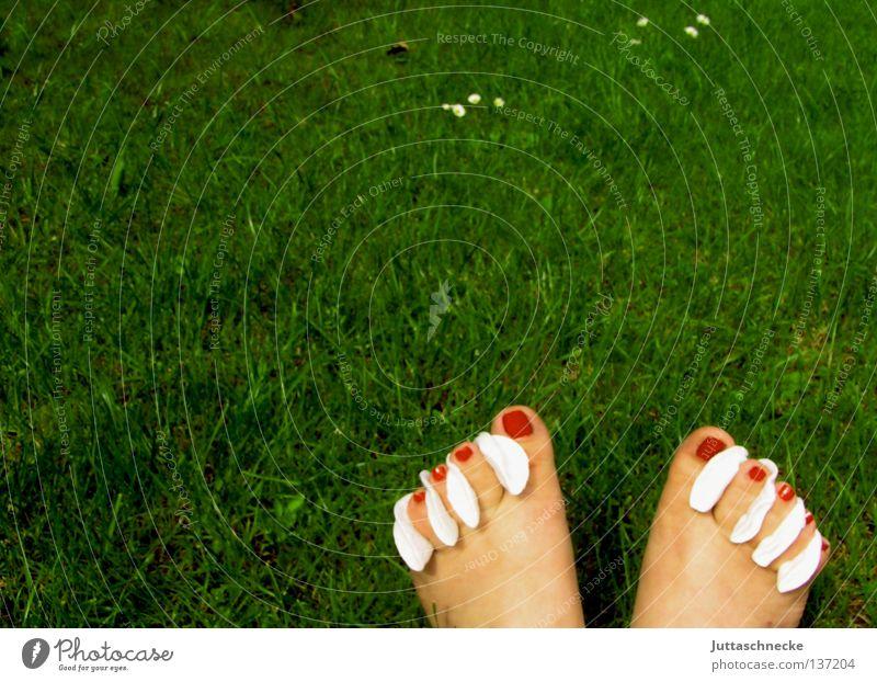 Aufbrezeln Nagel Zehen Nagellack rot lackieren Watte Gras Wiese grün Sommer Barfuß schön Fuß Wattepads Garten Pediküre bloßfüßig Rasen Juttaschnecke