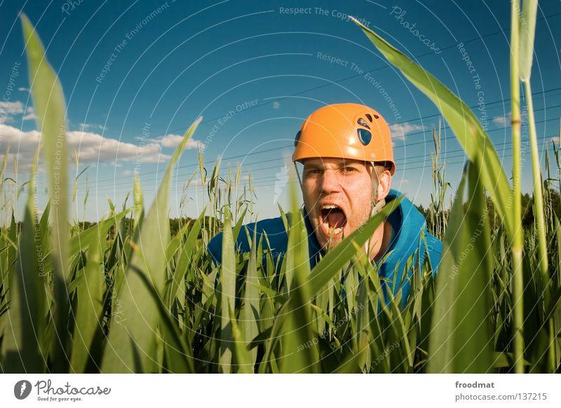 brüllaffe Helm Hongkong atmen Luft Wolken Schutzhelm Umweltschutz Umweltverschmutzung Wiese Gras Fischmaul Bart unrasiert Silhouette verrückt Humor lustig dumm