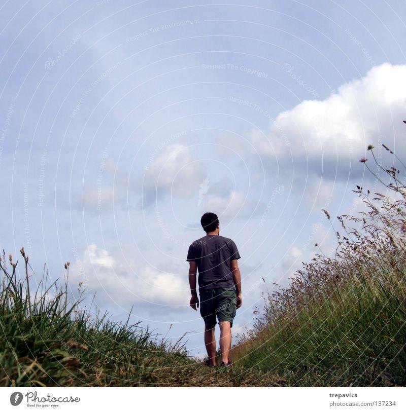 wochenende I Mann Himmel Blume blau Pflanze Sommer Ferien & Urlaub & Reisen ruhig Wolken Einsamkeit Leben Wiese Gras Frühling Wärme Landschaft