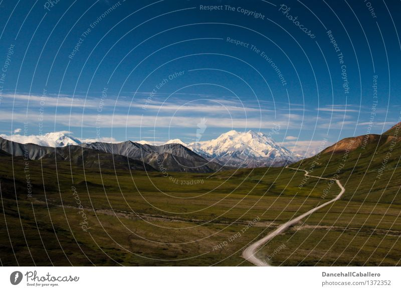 Alaska Day l Mt. Denali Ferien & Urlaub & Reisen Tourismus Ausflug Abenteuer Ferne Freiheit Sommerurlaub Berge u. Gebirge wandern Natur Landschaft Himmel Wolken