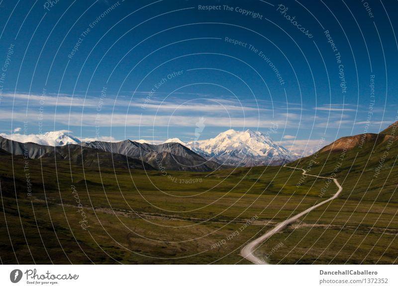 Alaska Day l Mt. Denali Himmel Natur Ferien & Urlaub & Reisen Sommer Landschaft Wolken Ferne Berge u. Gebirge Frühling Wiese Wege & Pfade Freiheit Felsen