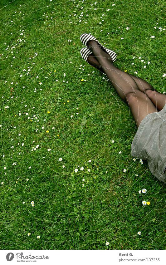 TanzBeine Gras Wiese Gänseblümchen grün weiß Park Erholung Strumpfhose Strümpfe schwarz durchsichtig Prima gestreift braun ruhig Frau Material kurz faulenzen