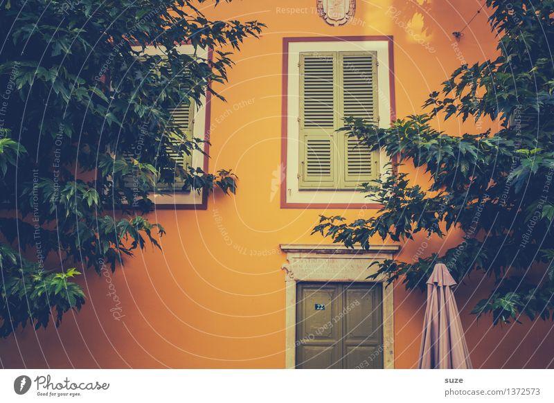 Früher oder später Ferien & Urlaub & Reisen alt Sommer grün Haus Fenster Wärme gelb Leben Gebäude außergewöhnlich Zeit Fassade Wachstum Kultur einzigartig