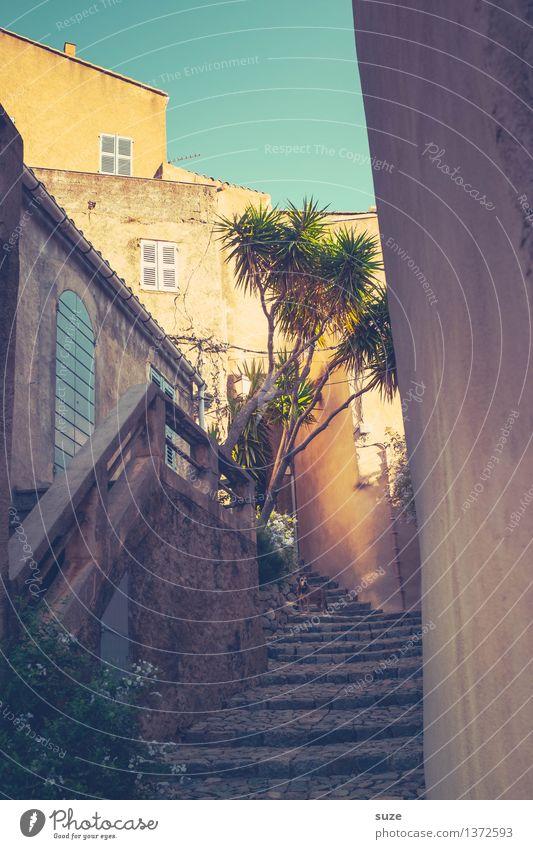 Es geht um den Hund Ferien & Urlaub & Reisen alt Sommer Haus Wärme Wege & Pfade Treppe Zufriedenheit fantastisch Kultur malerisch historisch trocken Dorf