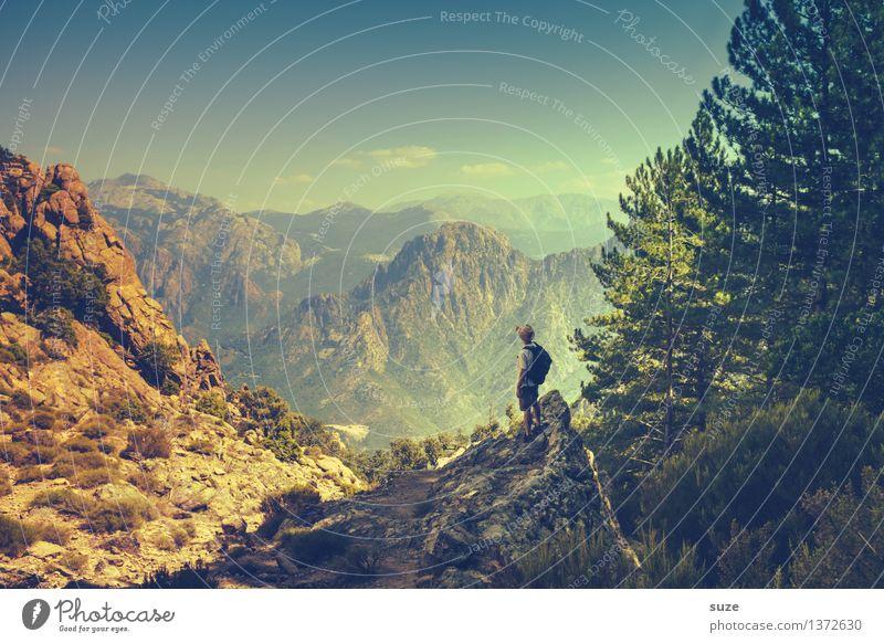 Bon voyage! Mensch Natur Ferien & Urlaub & Reisen Jugendliche Mann Sommer Baum Junger Mann Landschaft Berge u. Gebirge Erwachsene Umwelt Freiheit maskulin