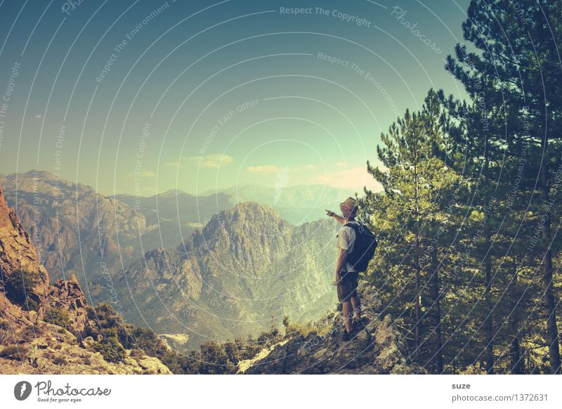 Immer höher, immer weiter Mensch Natur Ferien & Urlaub & Reisen Jugendliche Mann Sommer Baum Landschaft 18-30 Jahre Berge u. Gebirge Erwachsene Umwelt Freiheit maskulin Tourismus Freizeit & Hobby