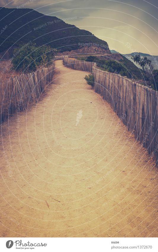 Strandläufer Ferien & Urlaub & Reisen Sommer Sommerurlaub wandern Natur Landschaft Sand Wärme Sträucher Berge u. Gebirge Küste Meer Wege & Pfade trocken Ziel