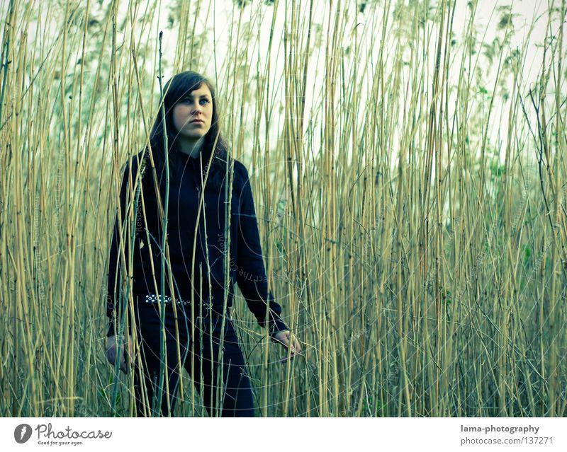 (r)ausblick Frau schön Farbe Einsamkeit Gefühle Gras Wege & Pfade Küste grau Traurigkeit See Erde Denken träumen warten Perspektive