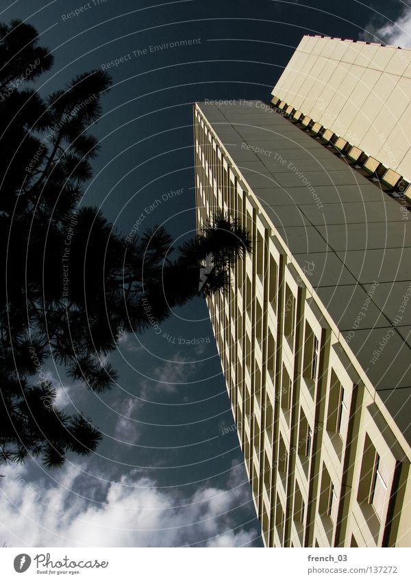 my home is my castle IV Himmel Baum blau Sommer Haus Wolken gelb dunkel kalt Wand oben Tod Fenster grau Mauer Gebäude