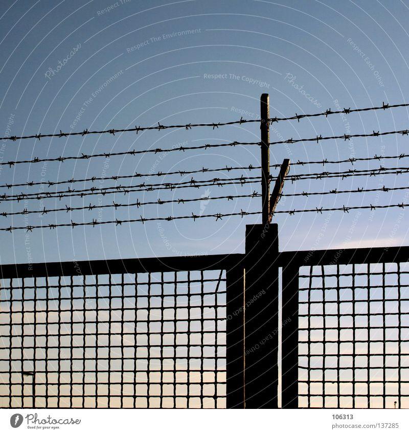 THE BORDER IN HIS HEAD Himmel blau Wolken Mauer Metall Angst Deutschland geschlossen Perspektive Klarheit Frieden Schutz verfallen Schmerz Stahl Grenze