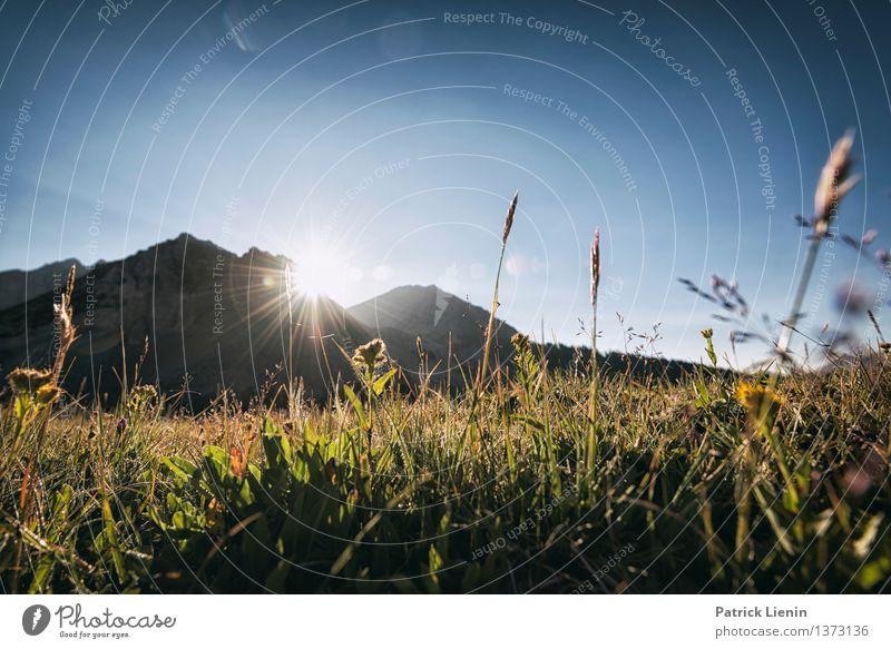 Morgendstund Ferien & Urlaub & Reisen Umwelt Natur Landschaft Urelemente Himmel Sonne Sonnenaufgang Sonnenuntergang Sommer Klima Klimawandel Wetter