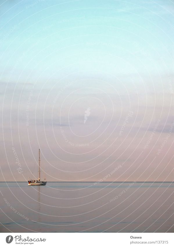 Tag am Meer Horizont Dämmerung Sonnenuntergang Wolken Wasserfahrzeug Segelboot Ferien & Urlaub & Reisen Segeln Segeltörn Regatta Pazifik Atlantik Küste