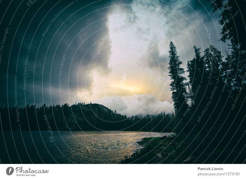 Rosalie Lake Himmel Natur Ferien & Urlaub & Reisen Pflanze Sommer Wasser Baum Landschaft Wolken Wald Berge u. Gebirge Umwelt Stimmung Regen Zufriedenheit Wetter