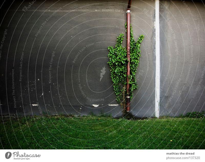 ZURÜCKEROBERUNG Wand Fassade Putz Pore hart Schutzschicht vertikal Haus Gebäude grau trist einfarbig dunkel Schatten Streifen weiß Loch Fallrohr Abwasser
