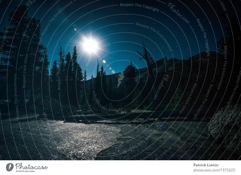 Vollmond Himmel Natur Ferien & Urlaub & Reisen Pflanze Sommer Baum Erholung Landschaft Ferne Berge u. Gebirge Umwelt Freiheit Stimmung Felsen Zufriedenheit