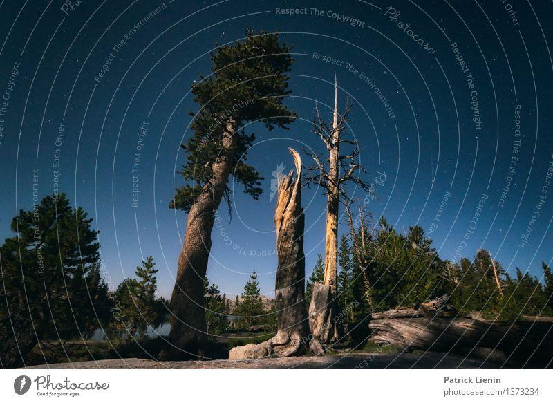 Mondlicht Himmel Natur Ferien & Urlaub & Reisen Sommer Baum Landschaft Ferne Wald Berge u. Gebirge Umwelt Freiheit Horizont Wetter wandern Ausflug Stern
