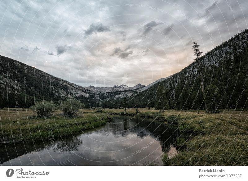 Donohue Pass Wohlgefühl Zufriedenheit Sinnesorgane Erholung ruhig Meditation Ferien & Urlaub & Reisen Berge u. Gebirge wandern Umwelt Natur Landschaft