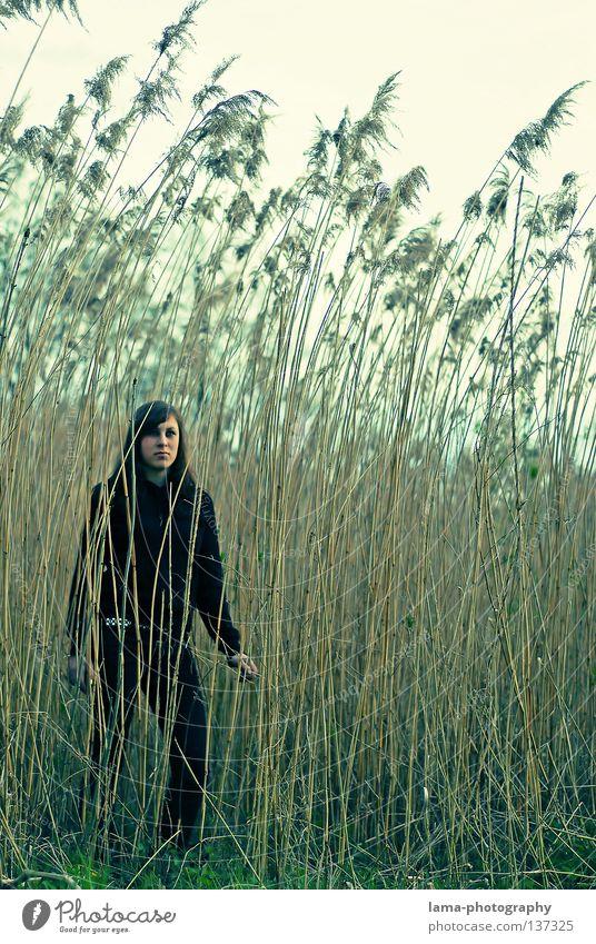 klein sein Frau schön Einsamkeit Liebe Gefühle Gras Wege & Pfade Küste grau Traurigkeit See Erde Denken träumen Wind warten