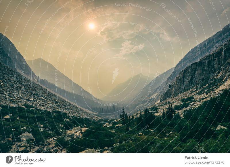 Kings Canyon Himmel Natur Ferien & Urlaub & Reisen Sommer Sonne Baum Landschaft Wolken Ferne Wald Berge u. Gebirge Umwelt Freiheit Luft wandern Abenteuer