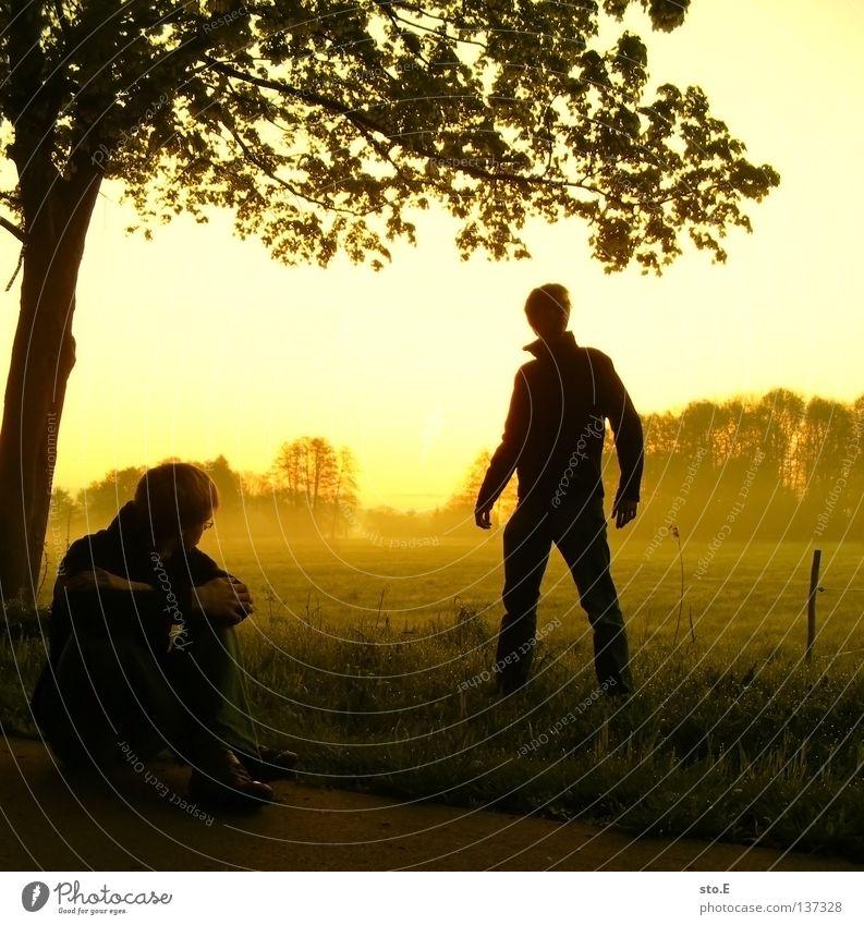 early morning | dissoziative identitätsstörung Mensch Mann Natur Jugendliche Himmel Baum Sonne ruhig Blatt schwarz Wolken gelb Ferne Farbe Lampe Wiese