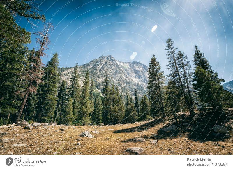 Sierra Nevada Himmel Natur Ferien & Urlaub & Reisen Sommer Sonne Baum Erholung Landschaft Ferne Wald Berge u. Gebirge Umwelt Freiheit Felsen Zufriedenheit Luft