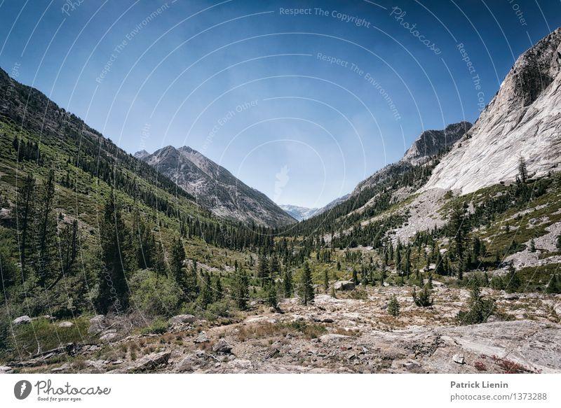 Kings Canyon National Park Himmel Natur Ferien & Urlaub & Reisen Pflanze Sommer Baum Landschaft Ferne Berge u. Gebirge Umwelt Freiheit Stimmung Zufriedenheit