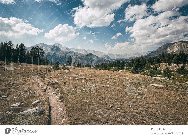 Wegweisend (1) Natur Ferien & Urlaub & Reisen Erholung Landschaft ruhig Wolken Ferne Berge u. Gebirge Umwelt Wege & Pfade Freiheit Zufriedenheit Erde wandern