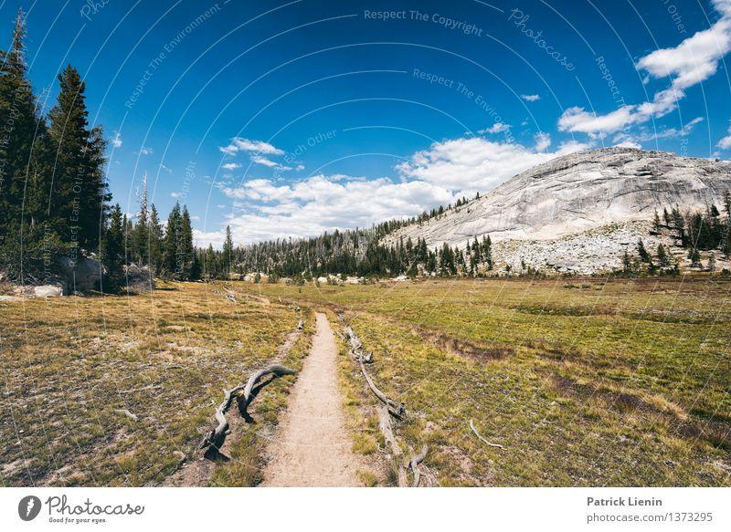 Wegweisend (2) Himmel Natur Ferien & Urlaub & Reisen Sommer Sonne Baum Landschaft Wolken Ferne Berge u. Gebirge Umwelt Freiheit Wetter Freizeit & Hobby Erde