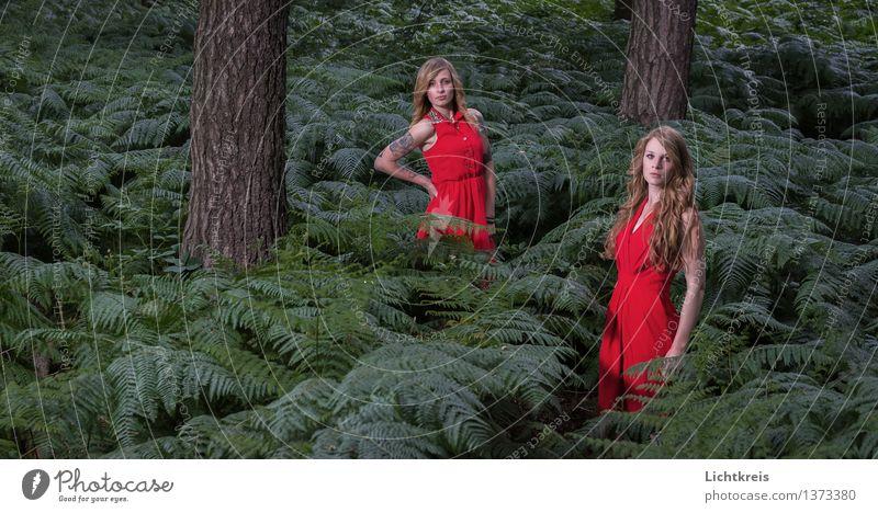 Zwei Mädchen im Wald Mensch Natur Jugendliche grün Sommer Junge Frau Baum rot 18-30 Jahre Erwachsene feminin Haare & Frisuren Mode leuchten elegant