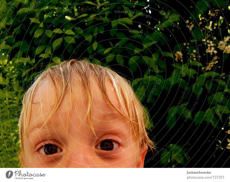 Wenn ich mal groß bin...... Kind Sommer Auge Junge klein nass groß Wachstum Vertrauen Neugier erstaunt Mai kulleräugig